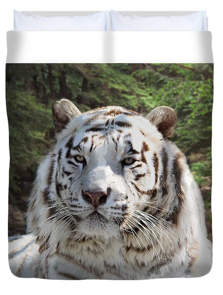 White Bengal Tiger Two Duvet Cover