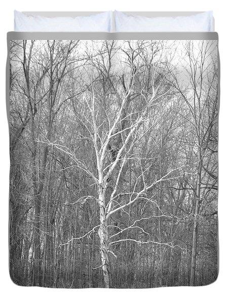 White Birch In Bw Duvet Cover