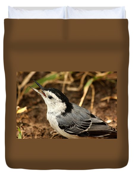White Breasted Nuthatch 2 Duvet Cover by Sheila Brown