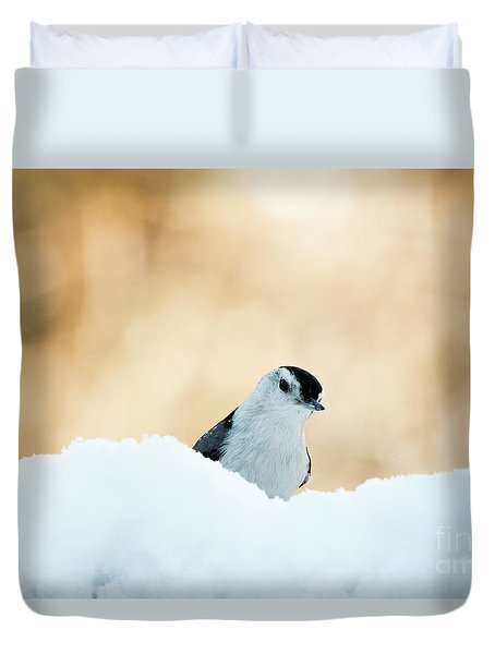 White Breasted Nuthatch In Snow Duvet Cover