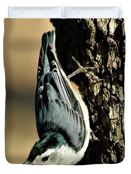 White-breasted Nuthatch On Tree Duvet Cover