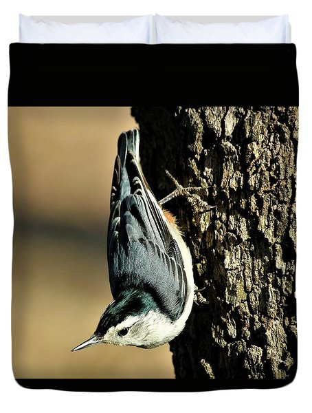 White-breasted Nuthatch On Tree Duvet Cover by Sheila Brown