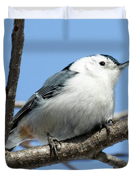 White-breasted Nuthatch Perched Duvet Cover
