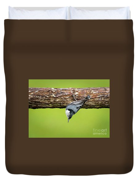 Duvet Cover featuring the photograph White-breasted Nuthatches by Ricky L Jones