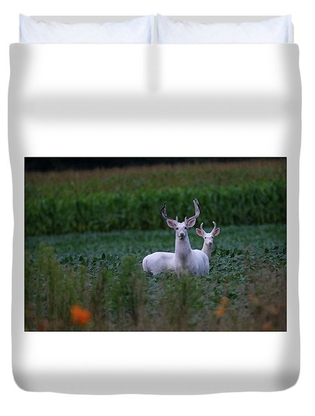 White Bucks Duvet Cover