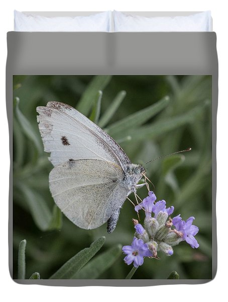 Duvet Cover featuring the photograph White Butterfly On Lavender by Cathy Donohoue