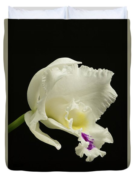 White Cattleya Orchid  Duvet Cover