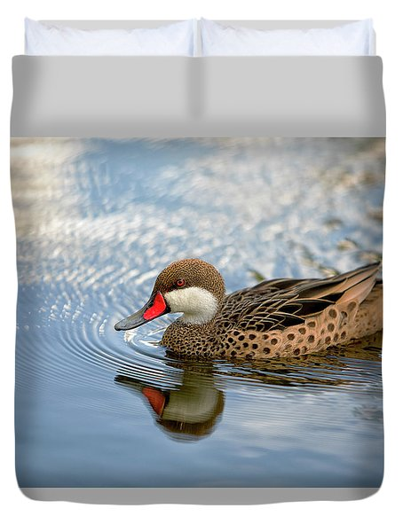 White-cheeked Pintail Duvet Cover