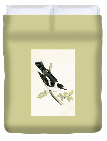 White Collared Flycatcher Duvet Cover by English School