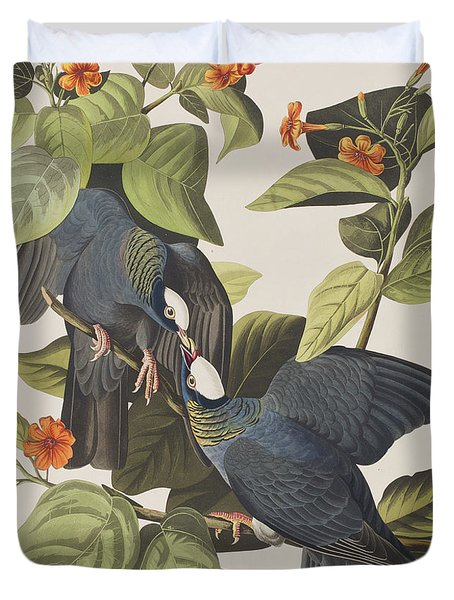 White Crowned Pigeon Duvet Cover