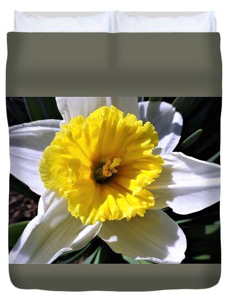 White Daffodil Closeup Duvet Cover