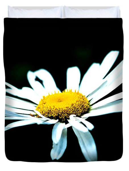 White Daisy Flower Black Background Duvet Cover