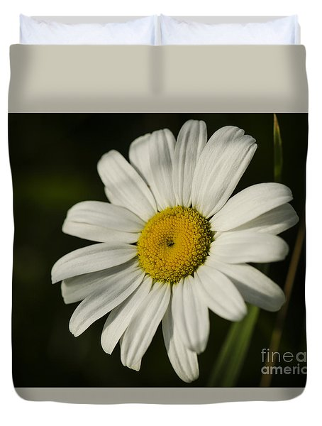 Duvet Cover featuring the photograph White Daisy Flower by JT Lewis
