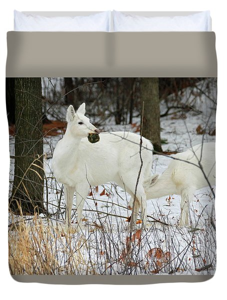 White Deer With Squash 2 Duvet Cover by Brook Burling