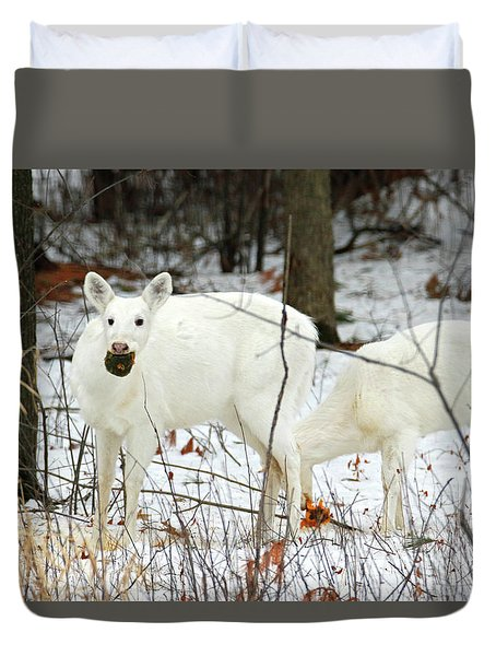 White Deer With Squash 3 Duvet Cover by Brook Burling
