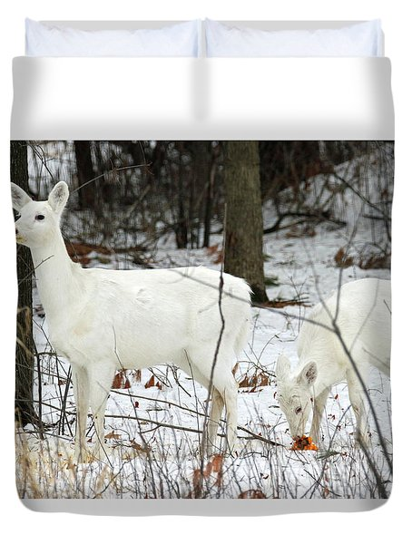 White Deer With Squash 4 Duvet Cover by Brook Burling