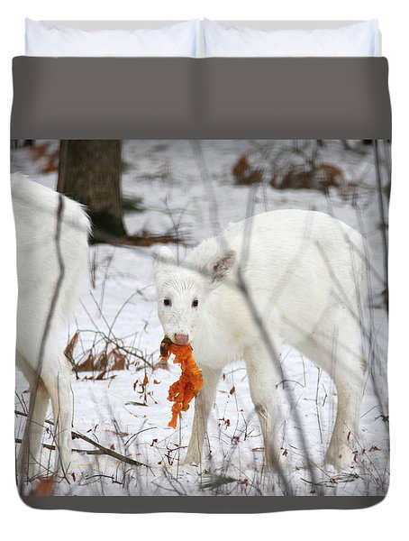 White Deer With Squash 5 Duvet Cover by Brook Burling