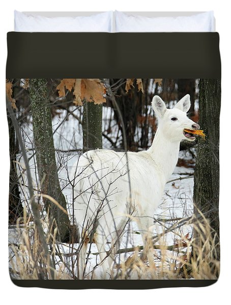 White Doe With Squash Duvet Cover by Brook Burling