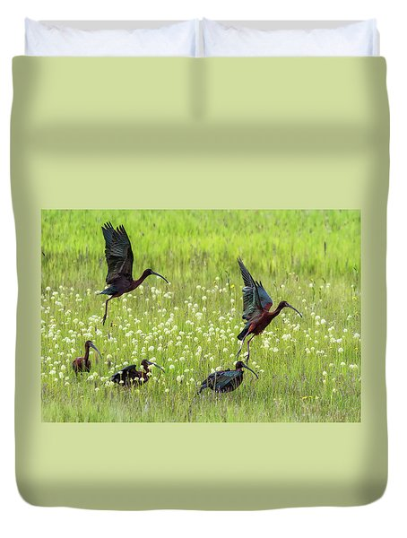 White-faced Ibis Rising, No. 1 Duvet Cover