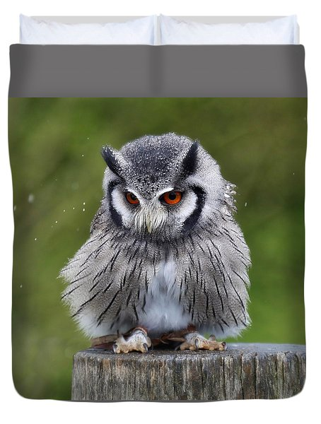 White Faced Owl Duvet Cover