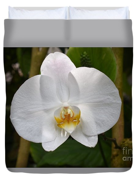 White Flower With Golden Accents Duvet Cover