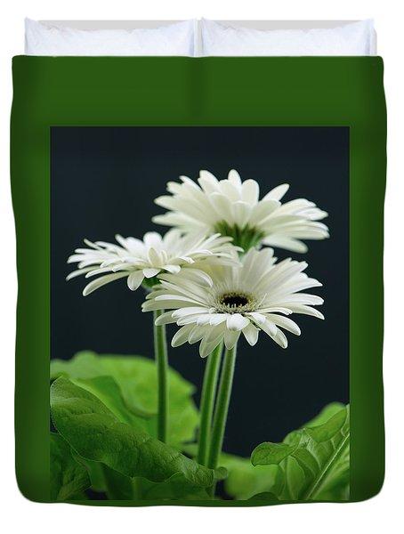 White Gerbers Duvet Cover
