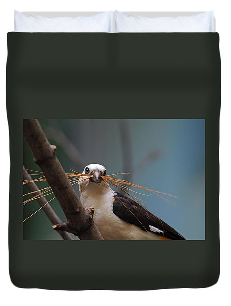 White-headed Buffalo Weaver Duvet Cover