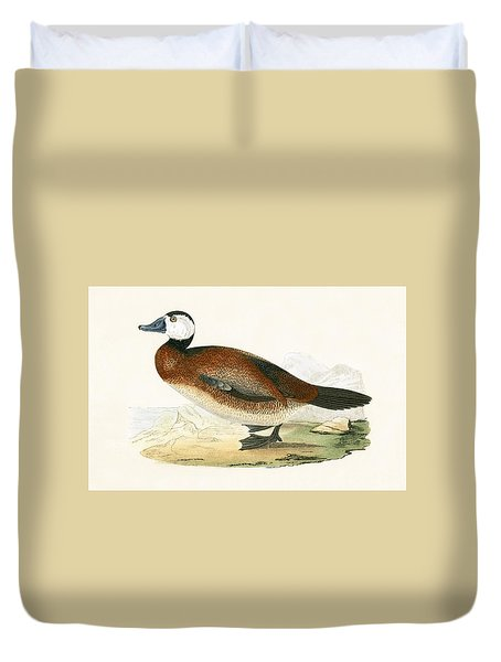 White Headed Duck Duvet Cover by English School