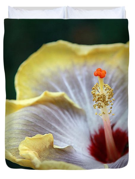 White Hibiscus Duvet Cover by Yvonne Wright