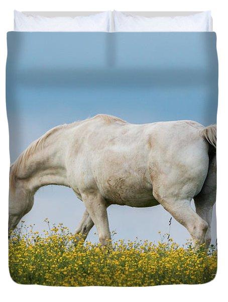 White Horse Of Cataloochee Ranch 2 - May 30 2017 Duvet Cover