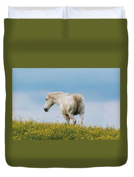White Horse Of Cataloochee Ranch - May 30 2017 Duvet Cover