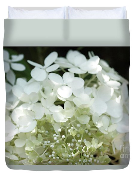 White Hydrangea I Duvet Cover by Mary Haber