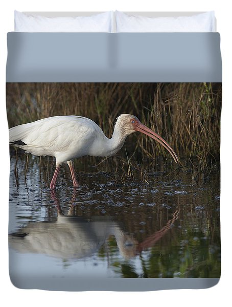 White Ibis Feeding Duvet Cover