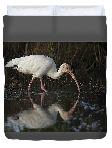 White Ibis Feeding In Morning Light Duvet Cover
