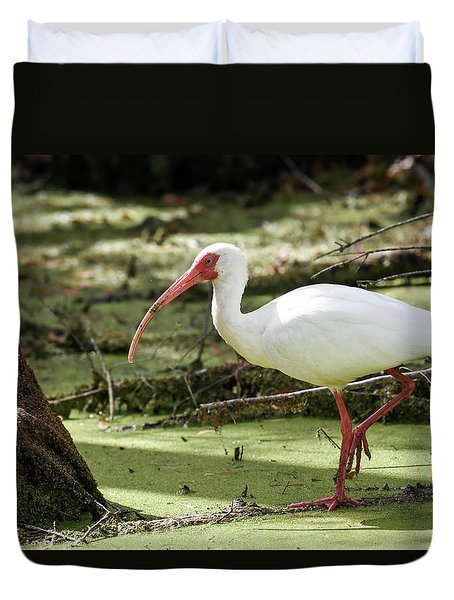 Duvet Cover featuring the photograph White Ibis by Gary Wightman