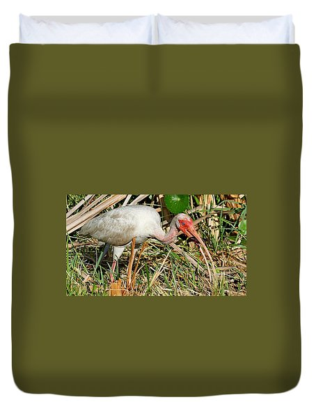 White Ibis With Crayfish Duvet Cover