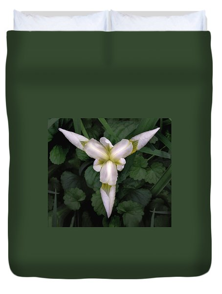 White Iris Tectorum  Duvet Cover