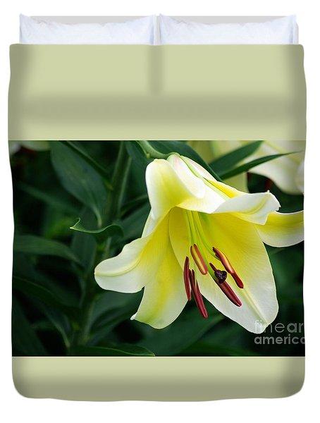 White Lily  Duvet Cover by John S
