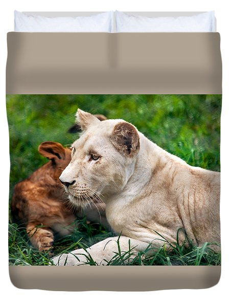 White Lion Cub Duvet Cover by Jenny Rainbow