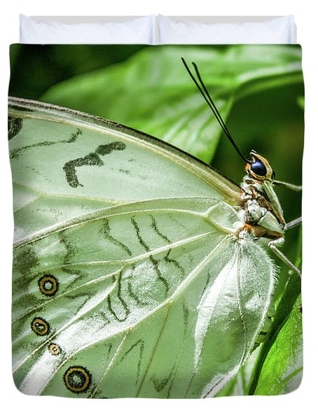 Duvet Cover featuring the photograph White Morpho Butterfly by Joann Copeland-Paul