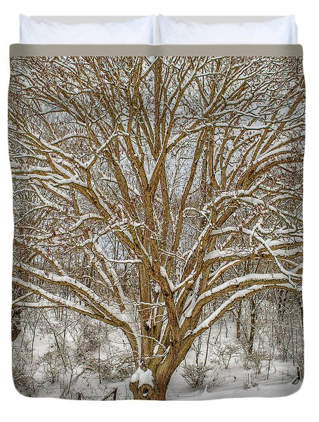 White Oak In Snow Duvet Cover
