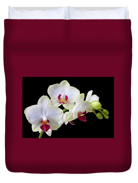 White Orchids Duvet Cover by Garry Gay