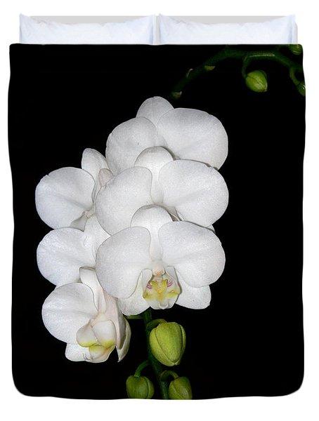 White Orchids On Black Duvet Cover