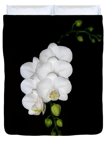 White Orchids On Black Duvet Cover