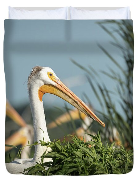 Duvet Cover featuring the photograph White Pelican 7-2015 by Thomas Young