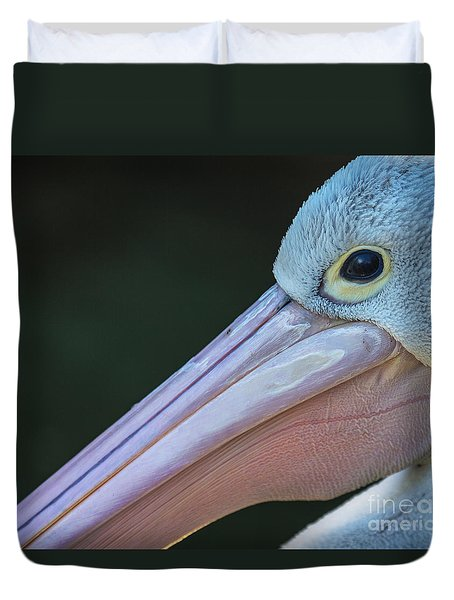 White Pelican Close Up Duvet Cover by Avalon Fine Art Photography