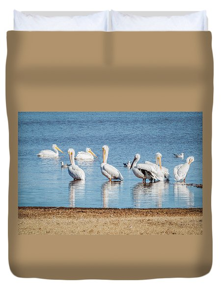 White Pelicans Duvet Cover by Doug Long