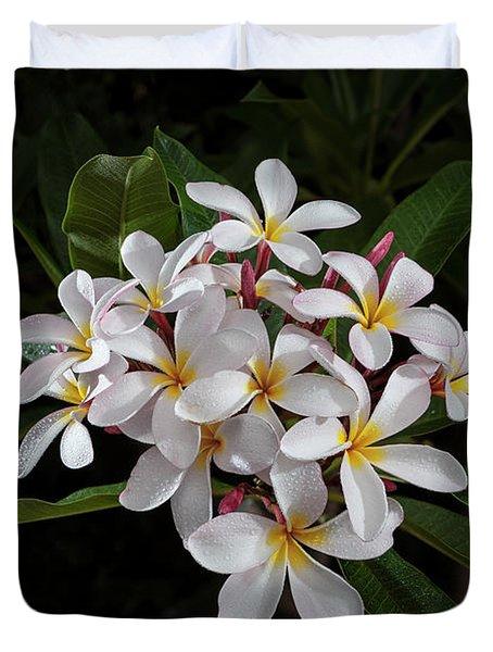 White Plumerias In Bloom Duvet Cover