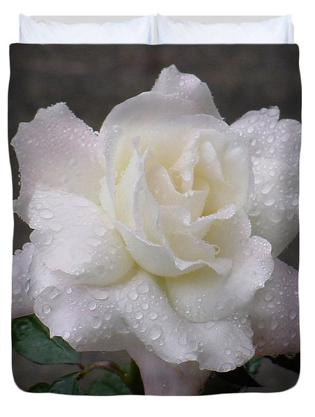 White Rose In Rain - 3 Duvet Cover by Shirley Heyn