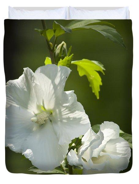 White Rose Of Sharon Squared Duvet Cover by Teresa Mucha